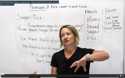 Intermediate Grammar: Non-Count and Count Nouns